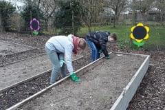 Urban-Gardening-2020